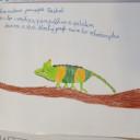 Jii-Zalusky-chameleon